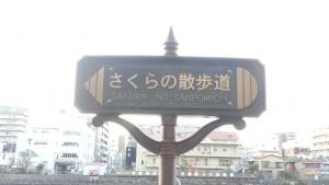 20150324_164719