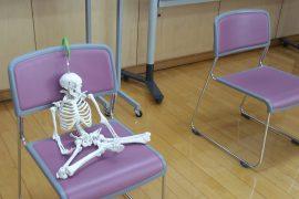 骨模型が椅子に座っている